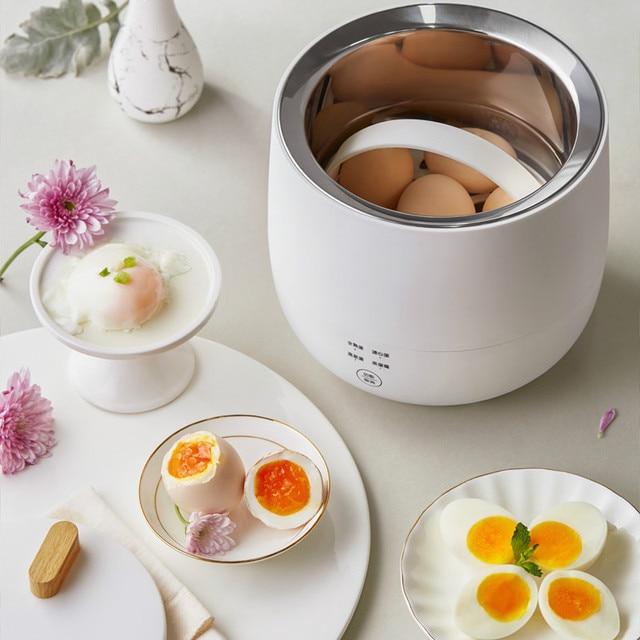 220V Electric Egg Cooker Household Breakfast Maker Multi Egg Custard/Hotspring Egg/Poached Egg/Boiled Egg Steaming Cooker 3
