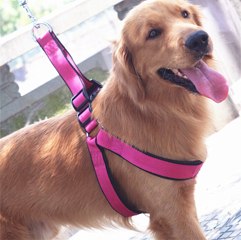 Dog Hand Holding Rope Dog Chain Small-Sized Big Type Teddy Vest Unscalable Dogs Pet Chest Universal Golden Retriever Walking