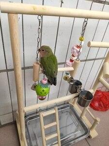 Image 5 - תוכי Playstands עם כוס צעצועי מגש ציפור נדנדה טיפוס תליית סולם גשר עץ קוקטייל משחקים ציפור מוטות 53*23*36cm