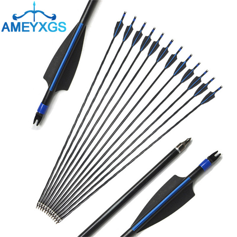 12 Fibreglass Archery Arrows Field Hunting /& Target Broadhead screw tip 30 inch