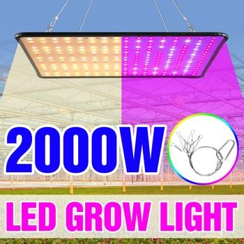 1000W Grow Light Led Full Spectrum Lamp 1500W 2000W Led Plant Light Bulb Greenhouses Indoor Phyto Lamp Grow Tent US EU UK Plug 1
