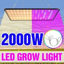 1000w crescer luz led espectro completo lâmpada 1500w 2000 led planta lâmpada estufas indoor phyto lâmpada crescer tenda eua ue reino unido plug
