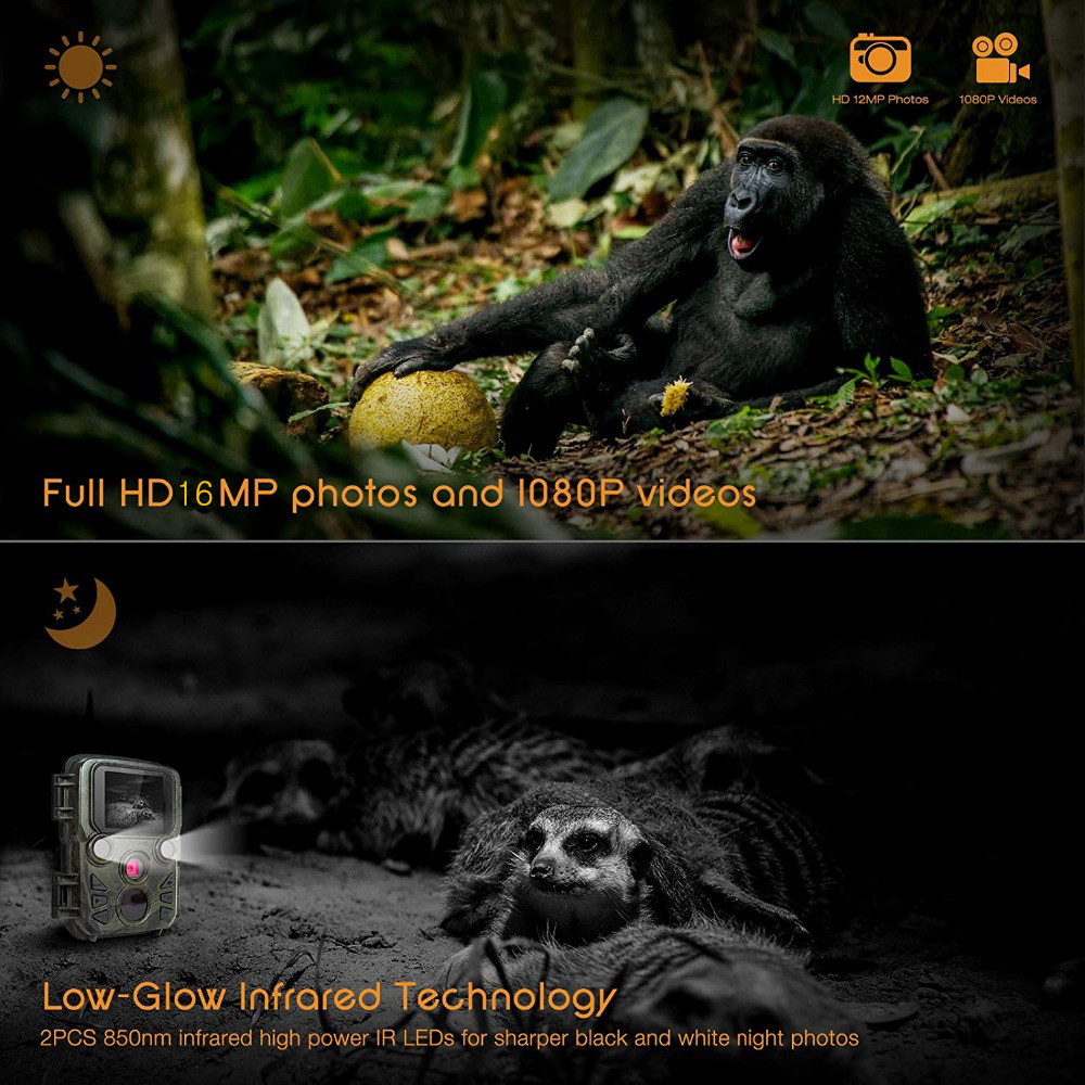 H2868232cd7bc4de383c815590342a6dcB - 16MP 1080P Mini Trail Photo-traps IP66 Hunting Camera Game Trail Camera Outdoor Wildlife Scout Guard Wildcamera with PIR Sensor