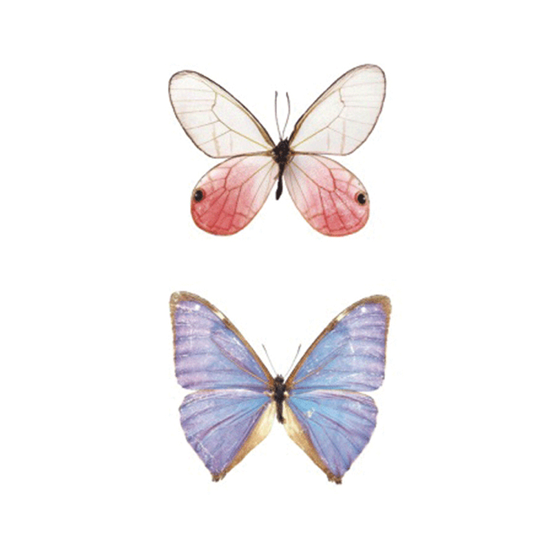 Wyuen Bird Temporary Tattoo for Adult  Waterproof Tatoo Stickers Body Art Beautiful 3D Butterfly Fake Tattoo for Women A-078 2