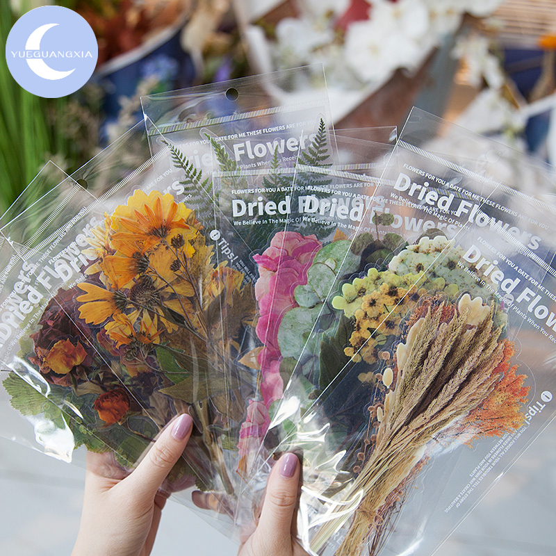 YueGuangXia Floral Plant Deco Stickers Scrapbooking Styling Bullet Journal Toy Deco Album DIY Stationery Stickers 8 Designs 6Pcs