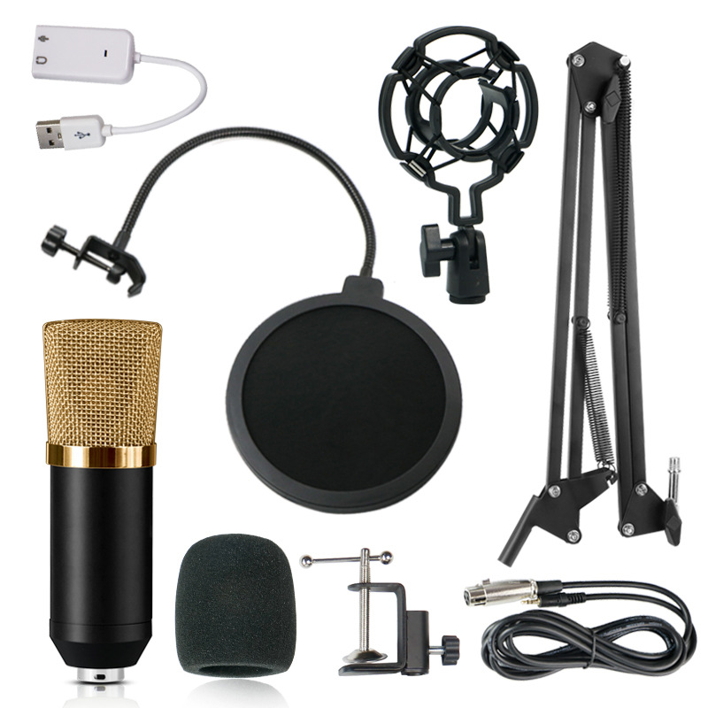 Microfone BM 700 Studio Microphone Professional Microfone BM700