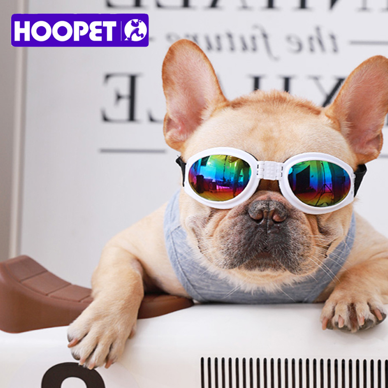 HOOPET Pet Sunglasses Cat Dog Fashion Glasses Outdoor Sports Use Or Travel Animal Cool Colorful Products Accessories
