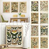 La Fauna y la Flora Retro Posters Vintage lienzo pintura hongo fruta pared imágenes artísticas Decoración Para sala de estar decorativo