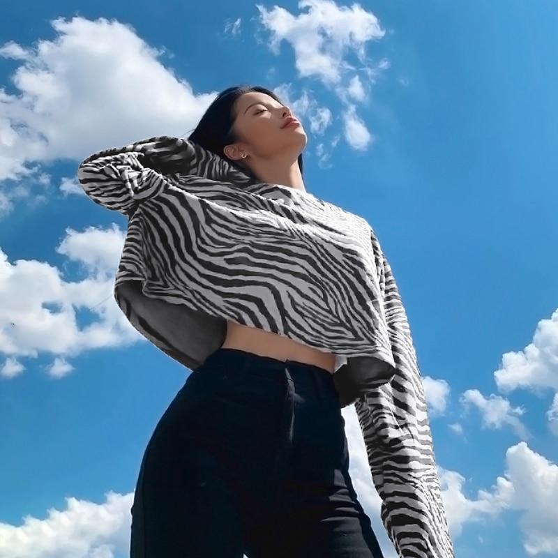 Zebra Sweatshirt (13)