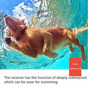 Image 5 - 500M szkolenia psów kołnierz Pet elektryczny zdalny obroża do kontroli wodoodporny akumulator szkolenia psów przyrząd szkoleniowy z wyświetlaczem LCD 30% taniej