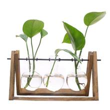 Big deal Plant Terrarium with Wooden Stand Glass Vase Holder for Home Decoration,Scindapsus Container (3 Terrariums)(China)