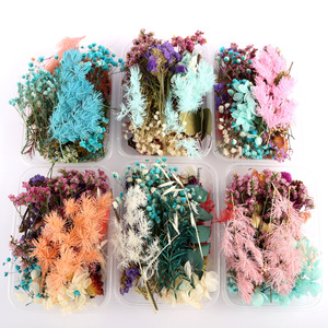 Christmas Dried Flower Dry Plants For Aromatherapy Candle Epoxy Resin Pendant Necklace Jewelry Making Craft DIY Accessories