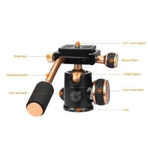 Image 5 - Q160 Professional Travel Camera Tripod Ball Head Handle Pan Head Compatibility for Digital Camera