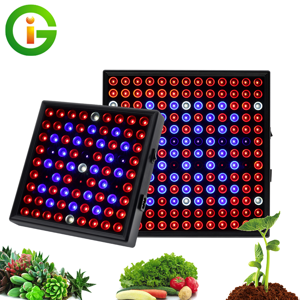 Growing Lamps LED Grow Light 25W 50W Full Spectrum Indoor Plant Lighting Fitolampy For Plants Flowers Seedling Cultivation