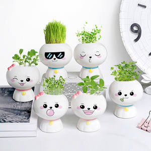 Potted Flower-Pot Plant Ceramic Succulent Indoor-Decoration Small Cute Simple Desktop