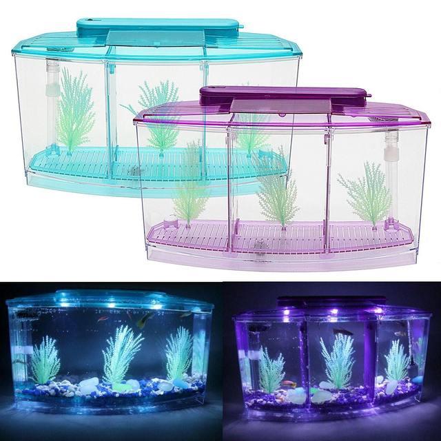 LED Betta Aquarium Tank 2
