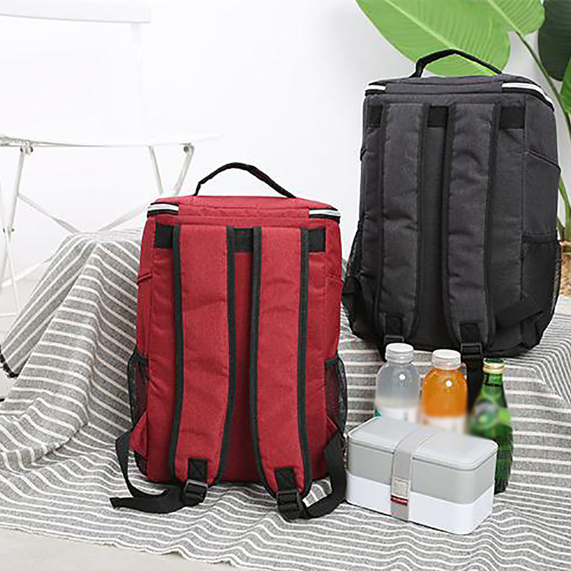 Image 5 - 20L Insulated Cooling Backpack Thermal Insulated Cooler Bag Bento Outdoor Picnic Pouch Lunch Backpack For Travel CampingCooler Bags   -