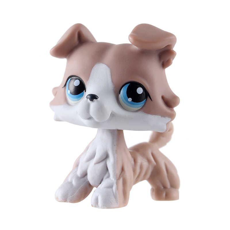 Rzadkie zwierzę domowe sklep lps zabawki czerwony krótkie włosy kot różowy czarny oryginalny rysunek czarny collie wizerunkiem psa rasy: cocker spaniel dog niemiecki prezenty dla dzieci