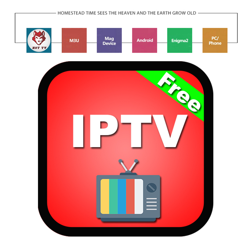 World IPTV M3u Subscription 1 Year For Portugal Spain France Italy USA Dutch Iptv M3u Subscription For Smart TV Android Box