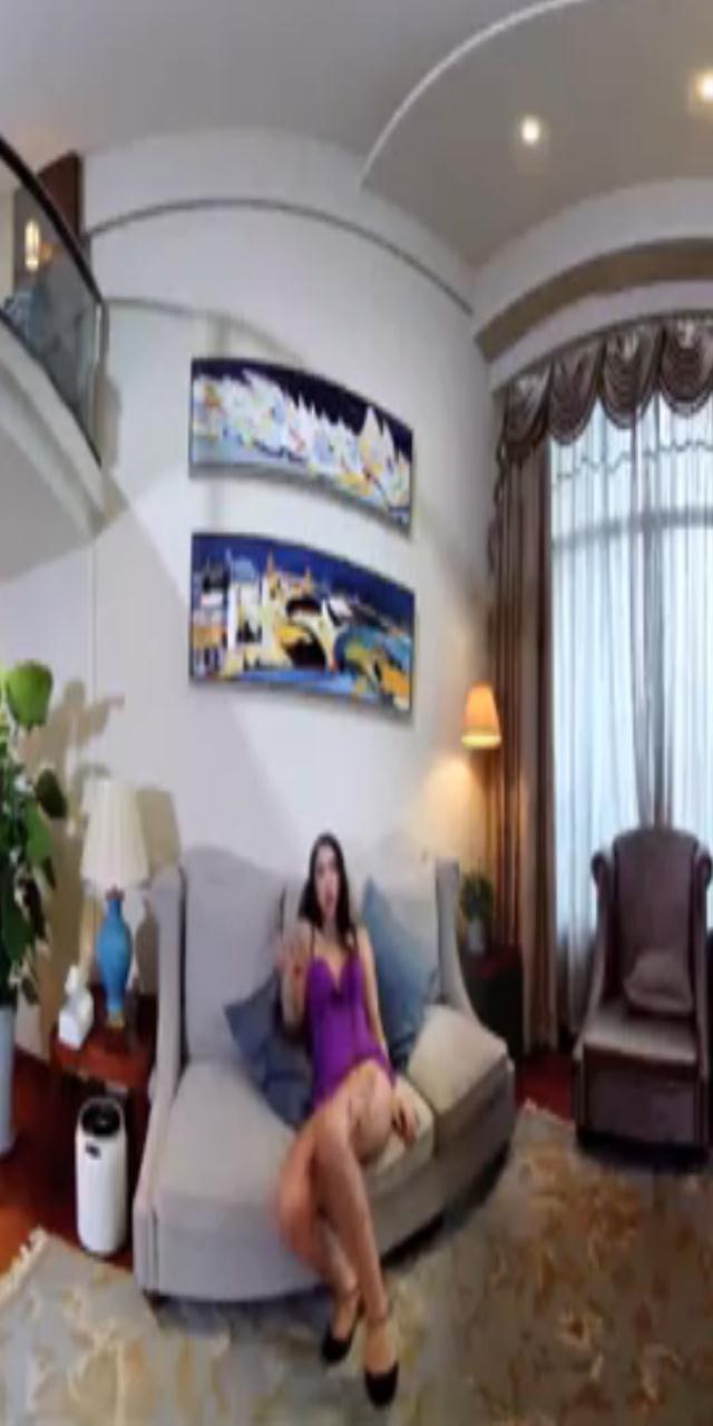 球球  - 情趣酒店里的秘密 [VR视频]