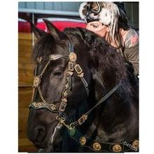 Thicken Horse Halter Padded Bridle Rein Headstall Head Strap Stable Horse Ridding Halter Bridle Strap Equestrian Halters BG50HH