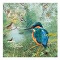 5D Стразы для рукоделия, мозаика из смолы, полная алмазная живопись kingfisher, комплекты крестиков, украшение для дома, алмазная вышивка, птица