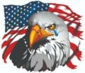 Наклейки с американским флагом и орлом, французские модные наклейки