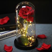 Mother's day birthday gift beauty and the beast red rose in the flask glass dome valentine gift rose lamp and night ligh red rose with fallen petals in a glass dome on a wooden base birthday gift beauty
