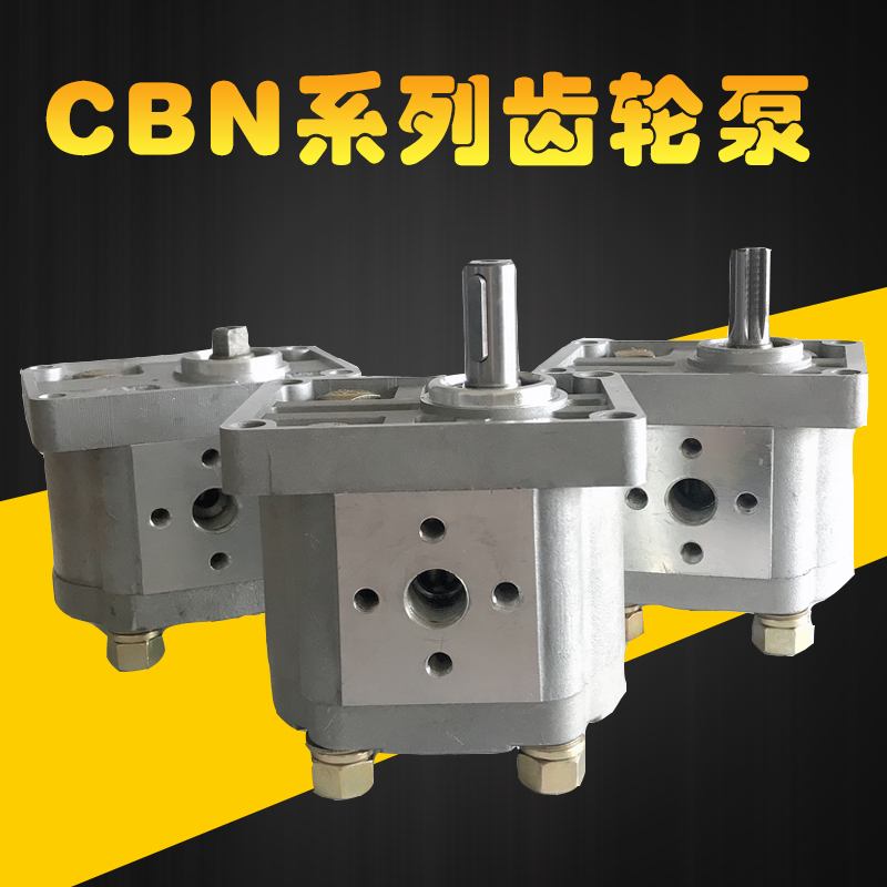 CBN-E306 6.3 Displacement 16MPA High Pressure Gear Pump Hydraulic Oil Pump Small Displacement