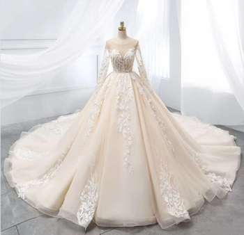 Elegant Long Lace Wedding Dresses with Sleeve A-Line Tulle Illusion Back Sweep Train Bridal Gowns for Women Real Photos