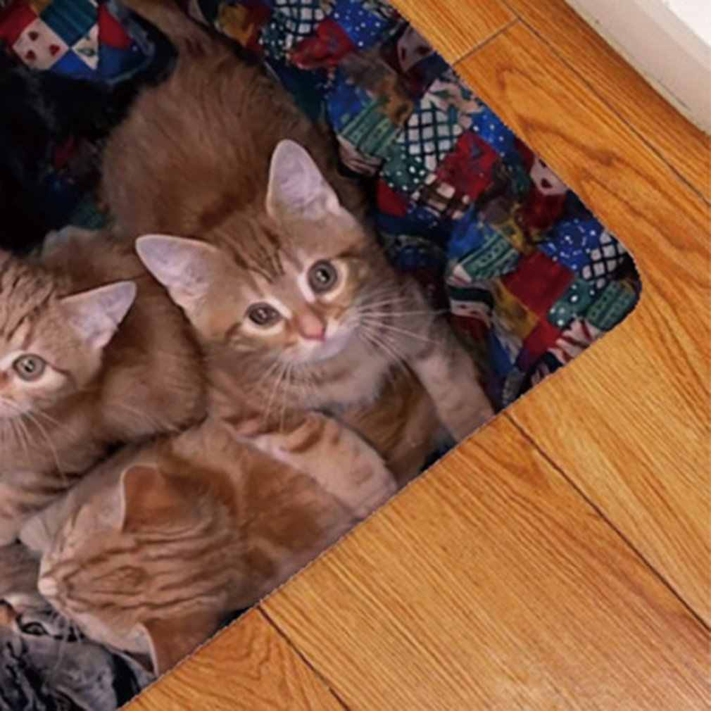 3D Kawaii Cat Print Welcome Floor Mats Bedroom Hallway Carpet Anti-Soft Doormat
