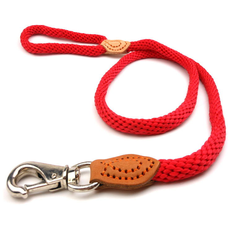 Pet Dog Chain Golden Retriever Medium Large Dog Dog Hand Holding Rope Pet Supplies Traction Belt