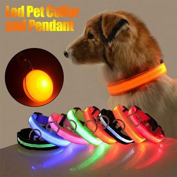 Night Safety LED Pet Collar Pets Alpha 1