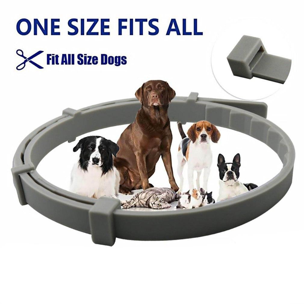 Adjustable Dog Collar Flea Tick Prevention Collar Solution-Natural Essential Oil Grey Safe Pet Pests Control Collar Dropshipping