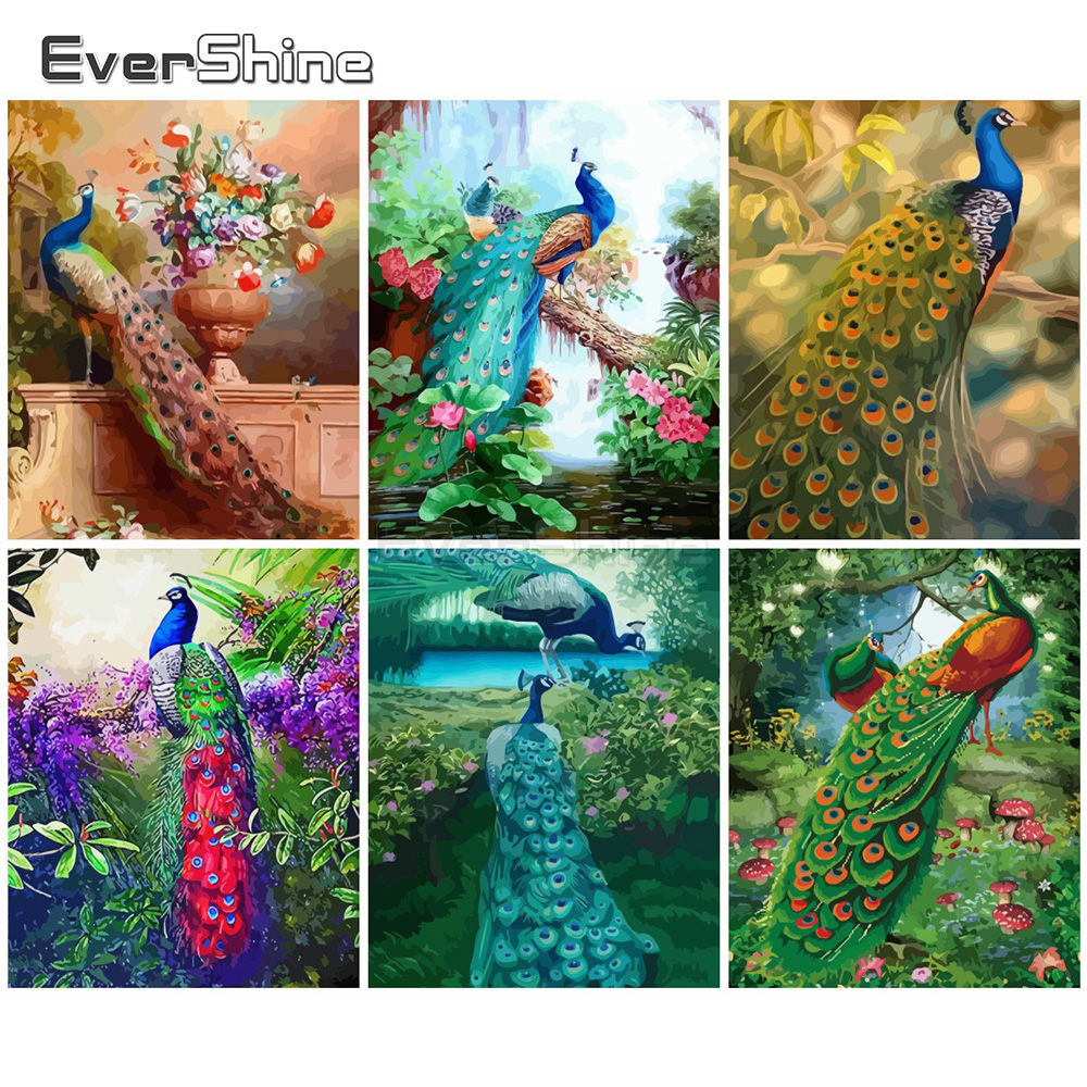 EverShine Painting By Numbers Animals Canvas Wall Set Paint By Numbers For Adults Peacocks Drawing Art Gift