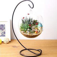 Подвесной Стекло ваза контейнер дома Террариум ящик для комнатных растений, Clear завод Декор