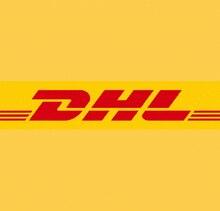 DHL nakliye maliyeti, uzaktan ücreti, bazı nakliye maliyeti ücreti fedex ems çin sonrası önce sipariş temas satış