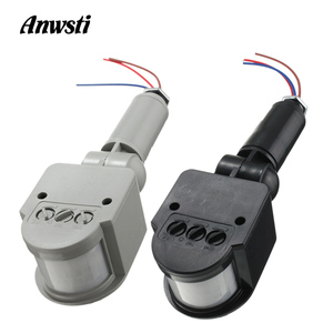 12V Motion Sensor 220V 110V PI