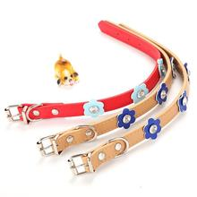 Fashion PU Leather Dog Collar Colorful Flower Studded Pet Cat Necklace Neck Strap