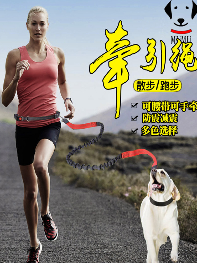 Pet Running Traction Belt Dog Telescopic Rope Dog Chain Small And Medium-sized Dogs Corgi Dog Chain Outdoor Belt For Walking Dog