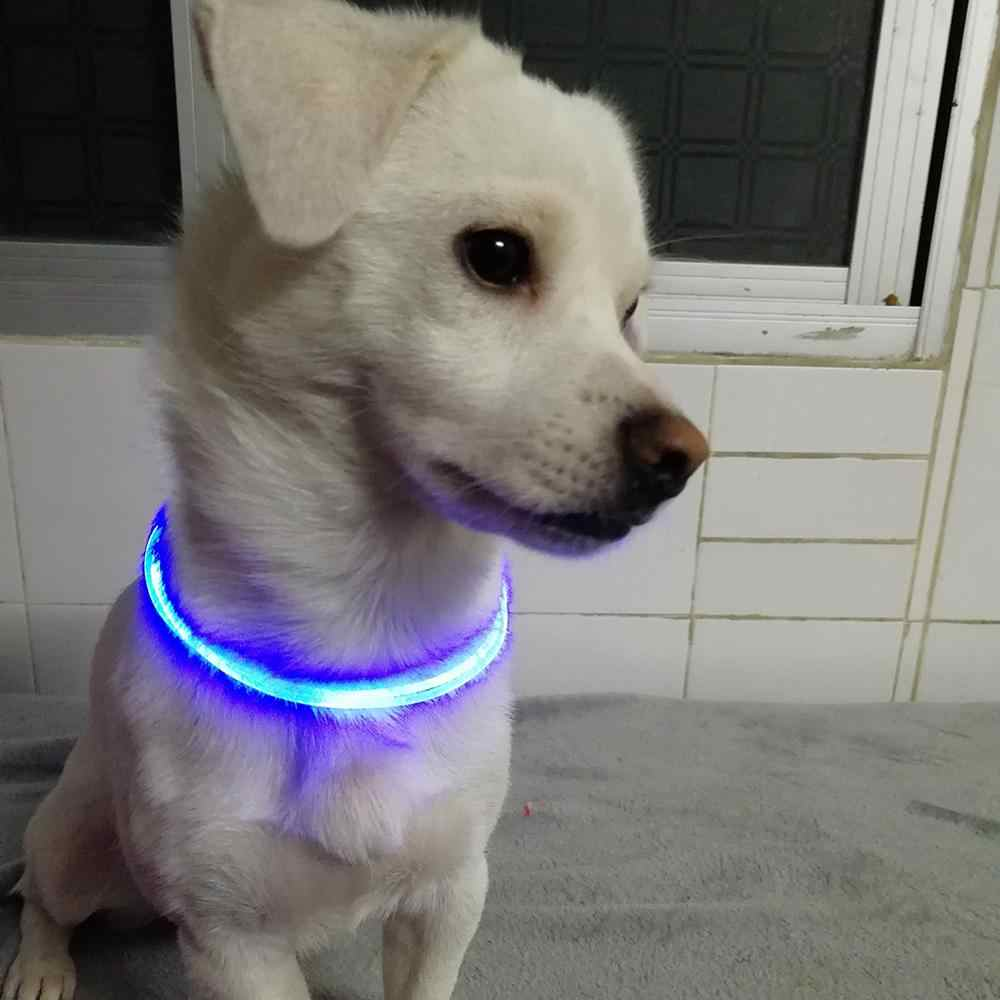 5 color LED Pet Collar Luminous Adjustable Pet Safety Collars Water Resistant Flashing Light