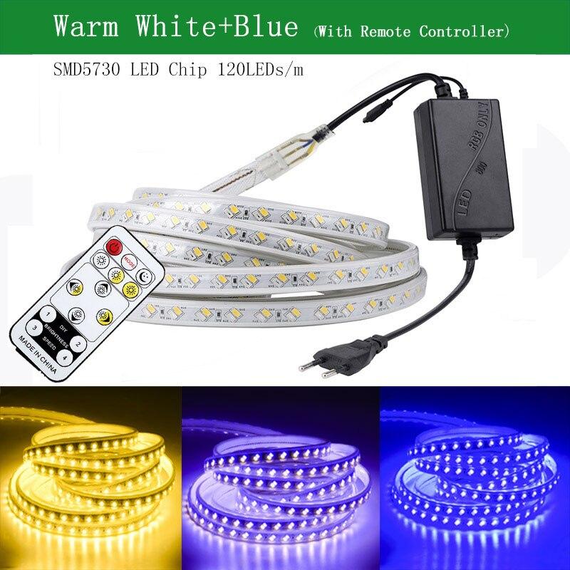 SMD 5050 LED bande 220V Flexible LED bande lumières extérieur étanche IP65 LED bande lumière Dimmable avec télécommande 70m 80m 90m 100m - 2