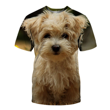 New 3d printed T-shirts for men/women 2021 fashion cute animal T-shirts funny dogs short-sleeved summer tops 3DT shirts men's ca
