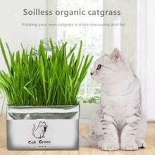 Беспочвенная органические Catgrass Cat трава снэк-набор для выращивания кошка посадка травы сумка Детская DIY ростки, сумка для растений