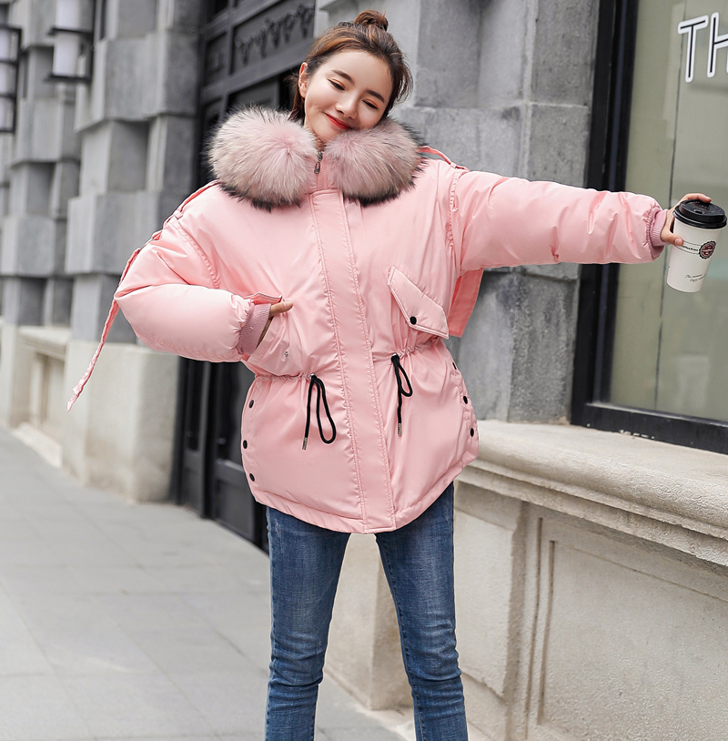 Korean Style 2019 Winter Jacket Women Cotton Padded Hooded With Fur Fe_C0_21