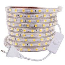 220V 110V LED Strip Light 5050 60LED/M Flexible Waterproof Tape Lights with Switch Plug Home Decoration 1m~100m