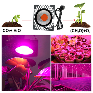 Image 5 - LED Grow Light 500W Full Spectrumประสิทธิภาพการส่องสว่างสูง50W COB PhytoโคมไฟสำหรับโรงงานSeedling Growและดอกไม้