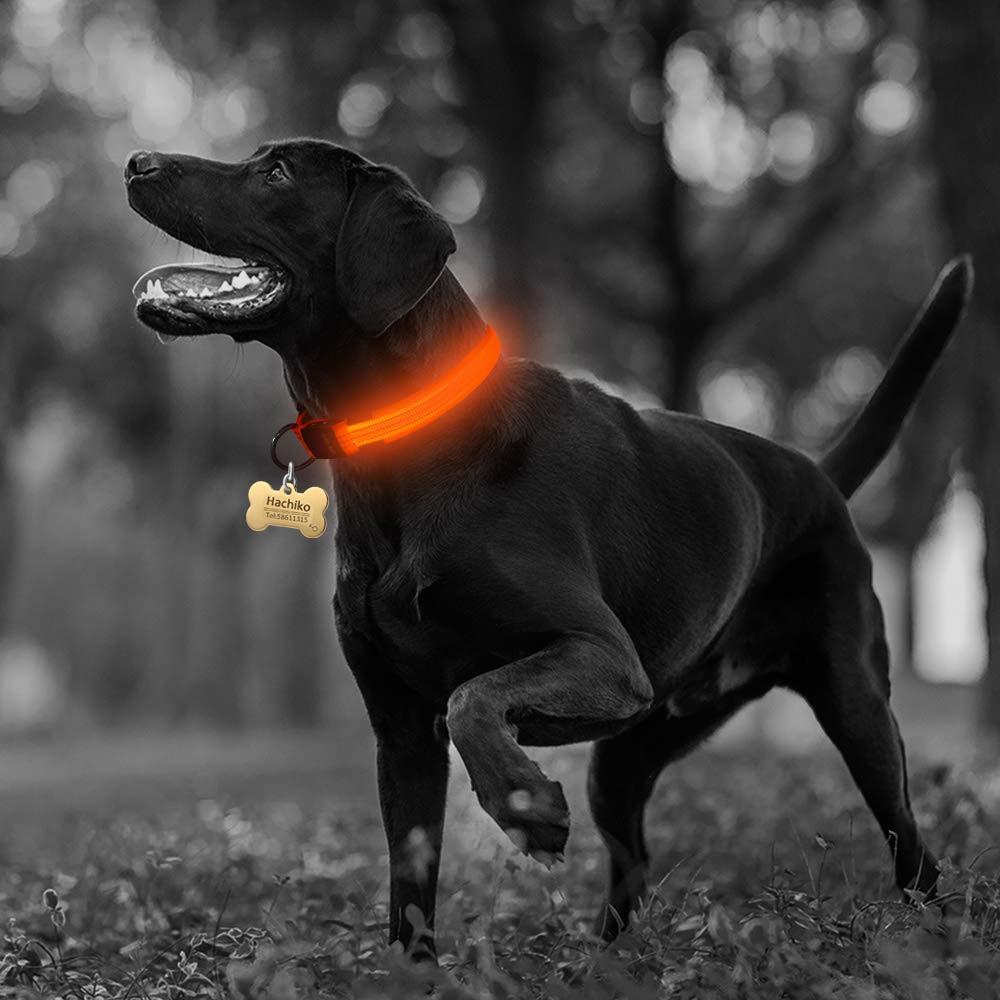 Nylon LED Pet dog Collar Night Safety Flashing Glow In The Dark Dog Leash Dogs Luminous