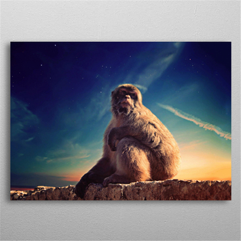 5D Diy Diamond Painting Daydreaming Macaque Diamond Embroidery Full Diamond Mosaic Animals Wall Sticker Rhinestones Home Decor image