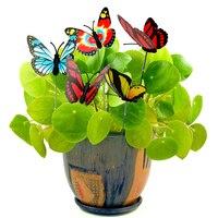 A borboleta colorida estacas a melhoria da casa exterior da decoração do jardim fornece 5 pces/grupo com pilha borboleta vasos de flores decoração Estacas decorativas e giradores de vento Casa e Jardim -